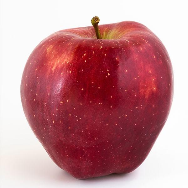 Starking Apfel